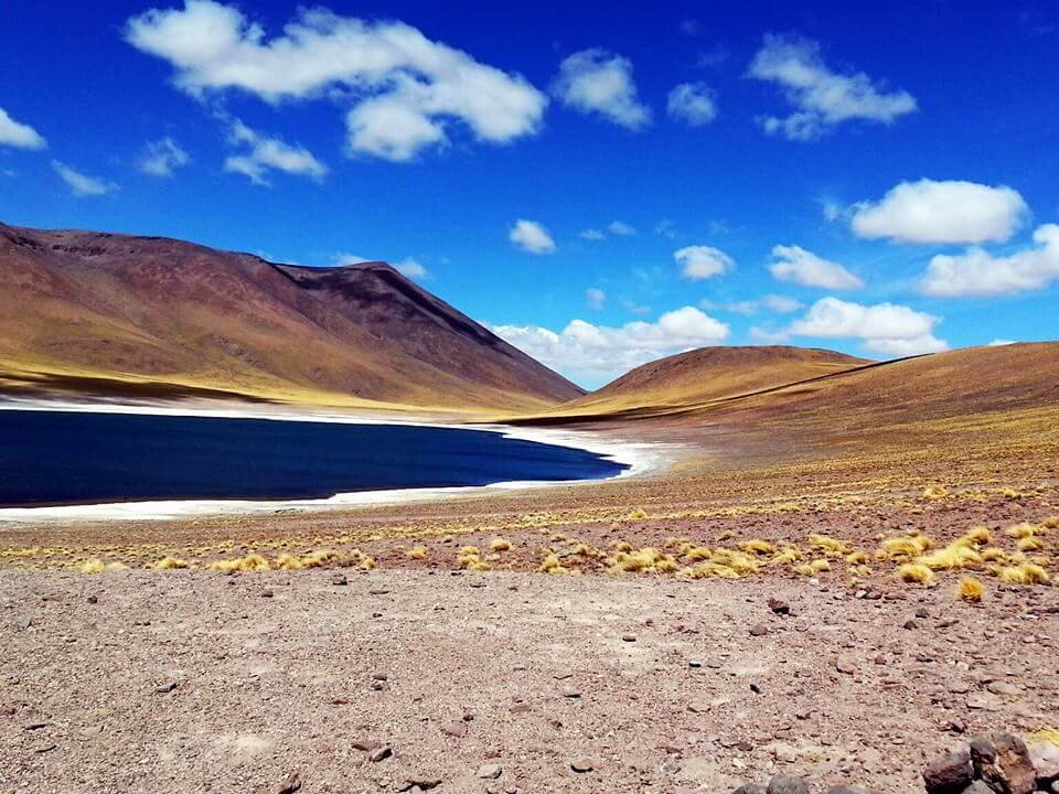 Altiplanic Lagoons | Visit Atacama Desert: The Perfect 4 Day San Pedro de Atacama Itinerary