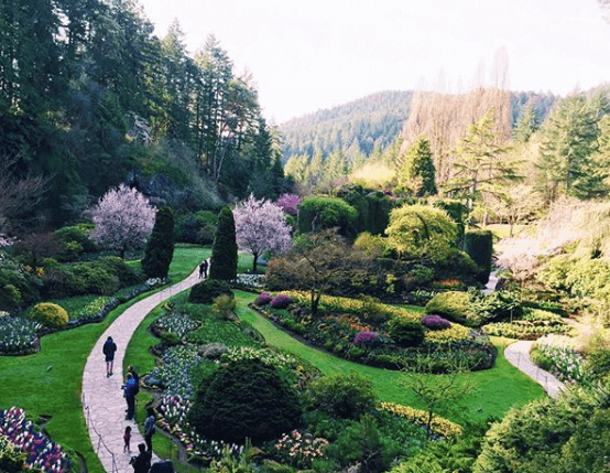 Butchart Gardens | Things to do in Victoria BC