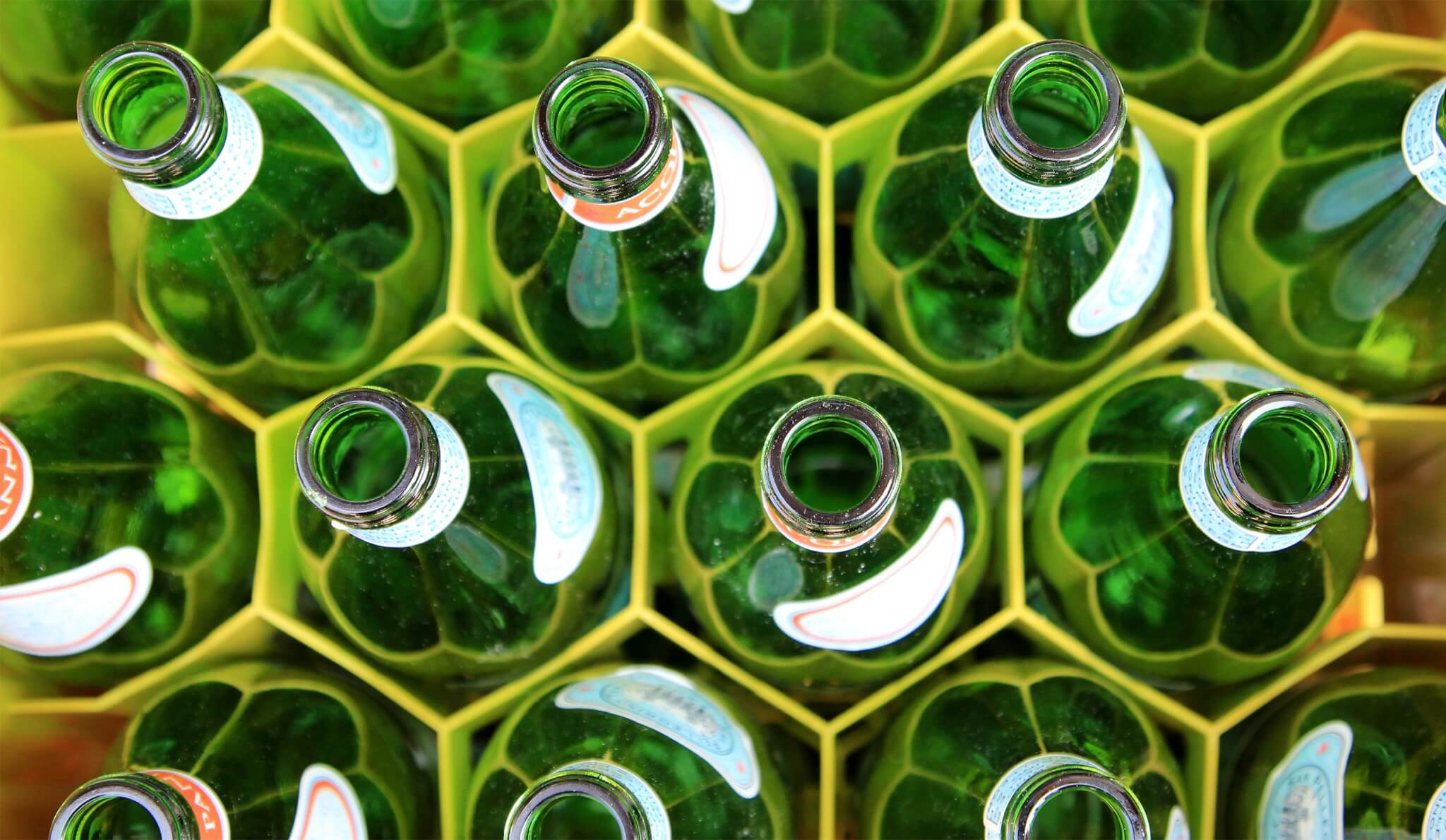 Green bottles | Reduce Your Ecological Footprint