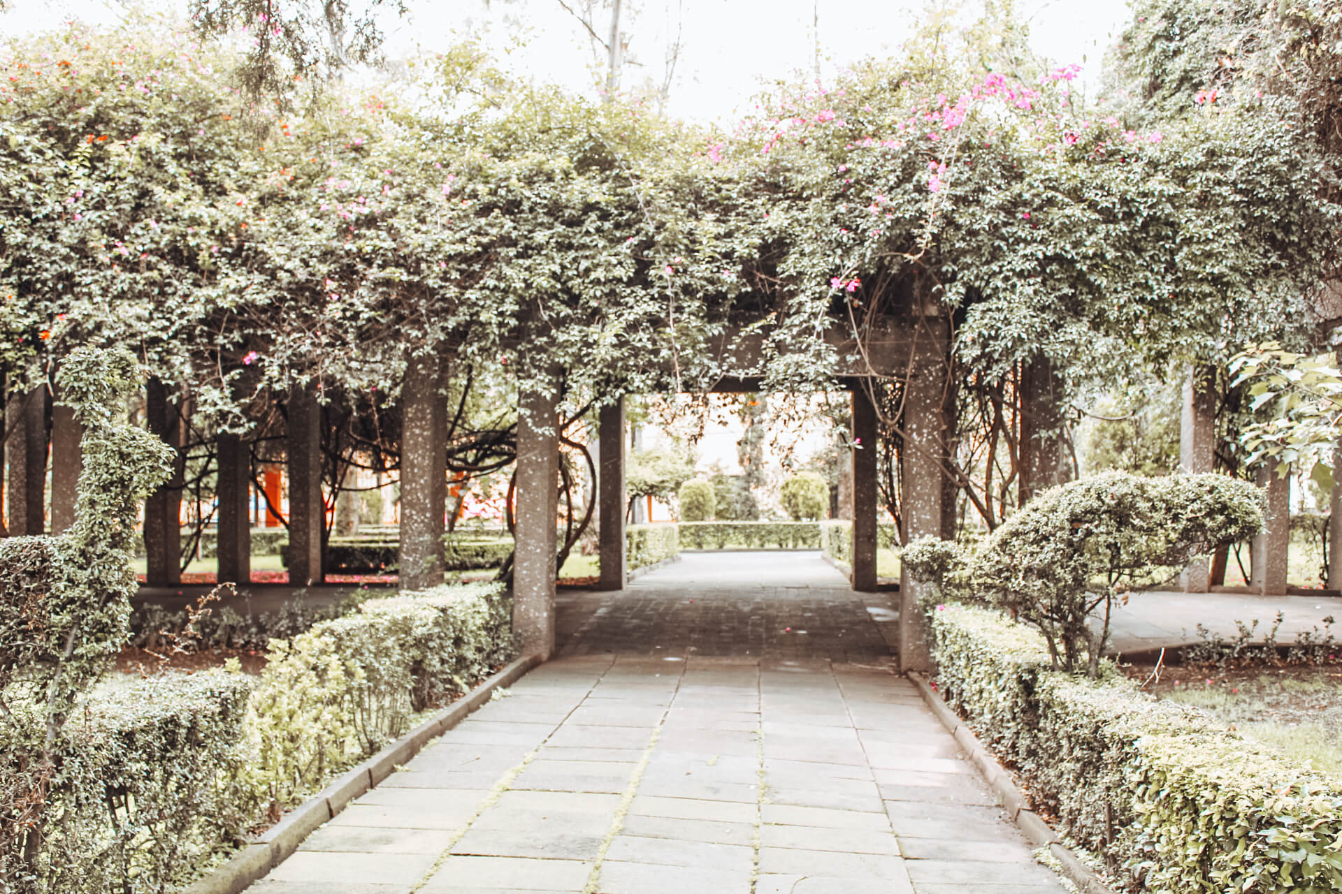 Parque Frida Kahlo