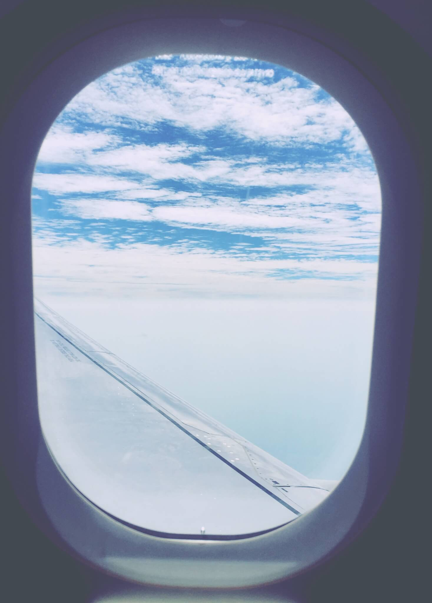Airplane View from Window | Sustainable Flights