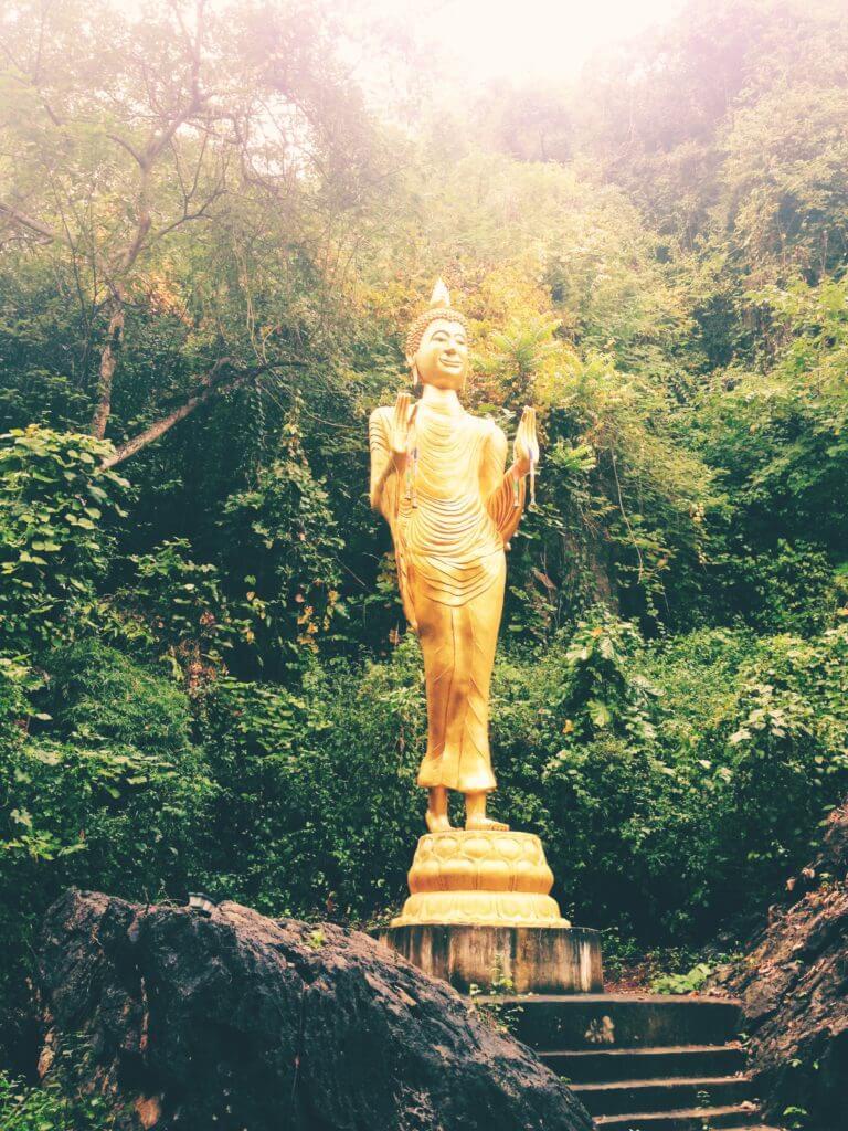 Go to Thailand   Buddha Statue in Jungle