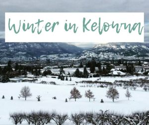 Winter in Kelowna / Christmas in Kelowna