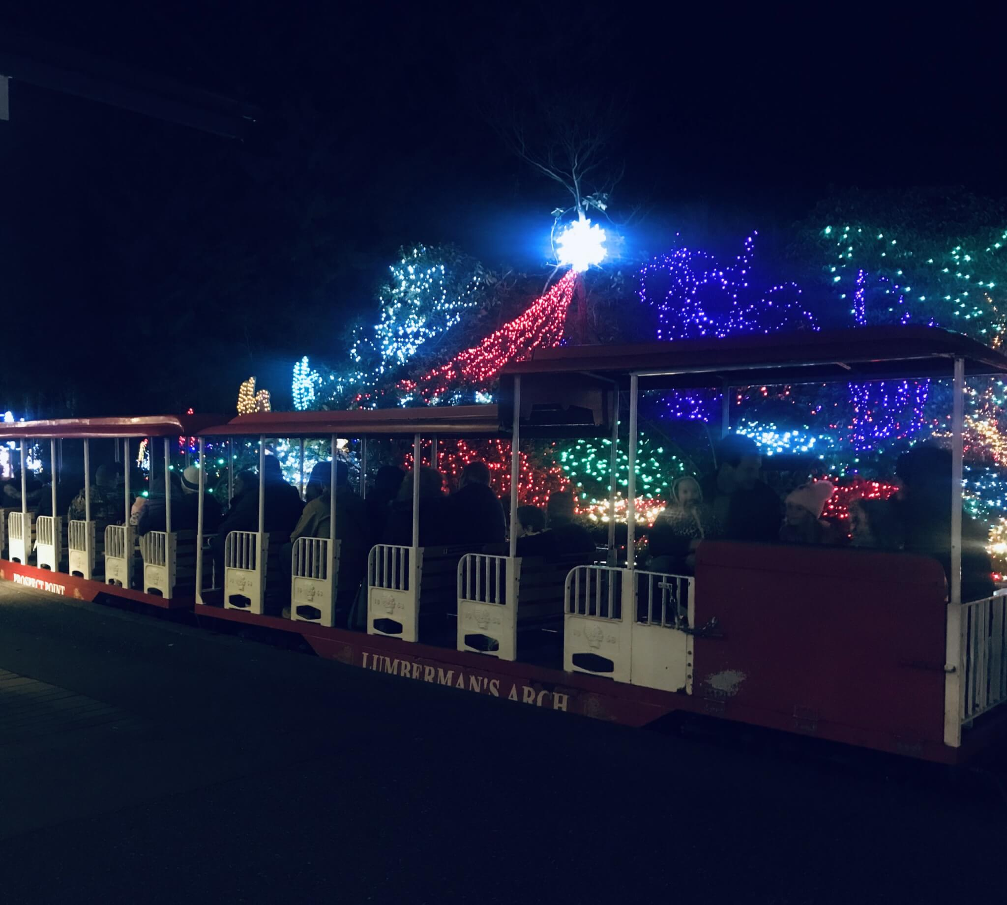 Christmas in Vancouver | Bright Nights in Stanley Park