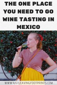 Tasting Mexican Wine in Querétaro: A Three Day Itinerary