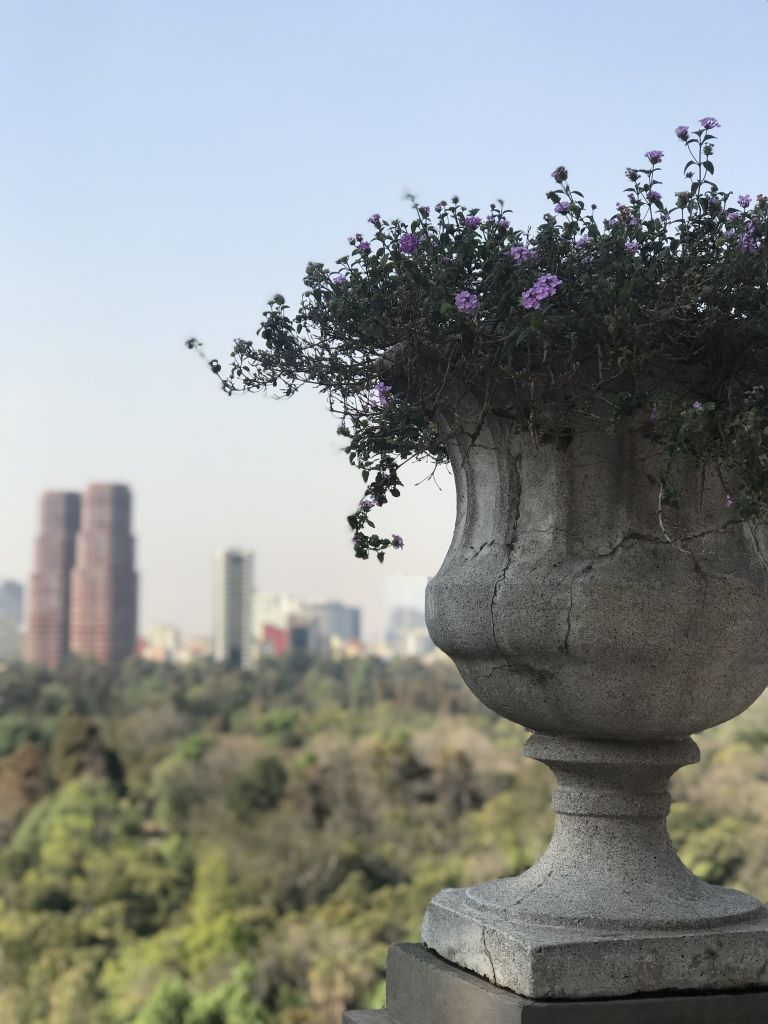 Chapultepec Park / Parks in Mexico City