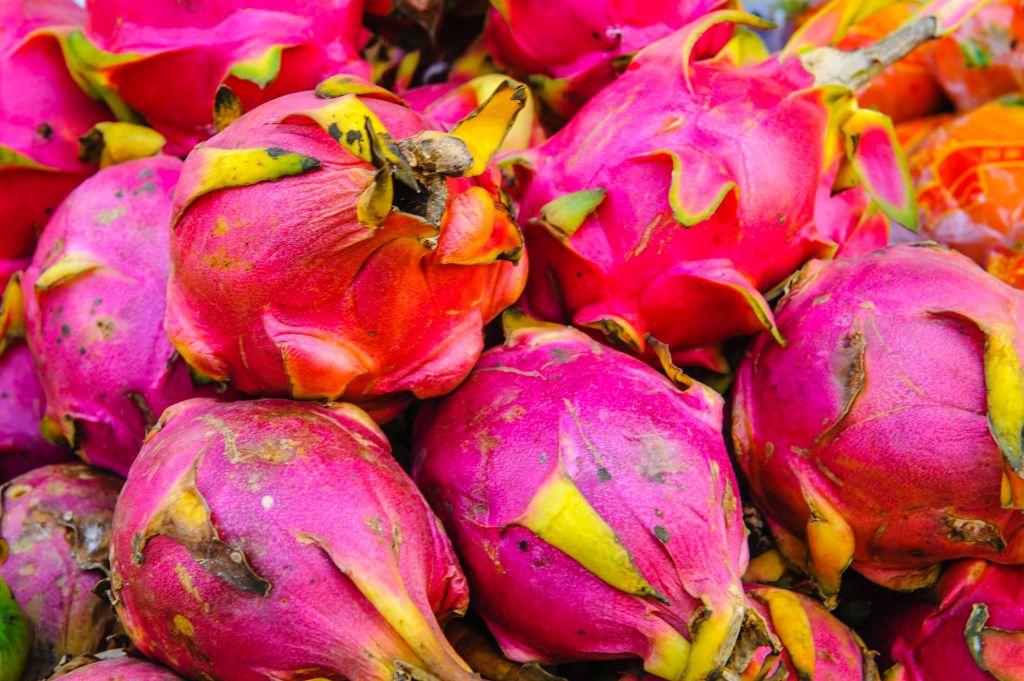 Online Vegan Cooking Classes | Dragon Fruit